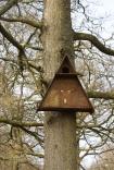 Barn Owl Chalet