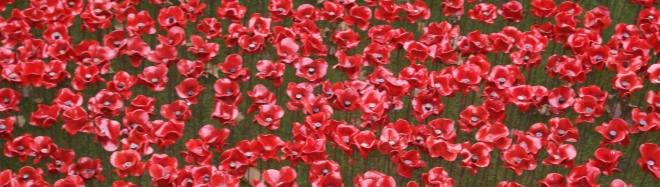 Rememberance poppies at the Tower