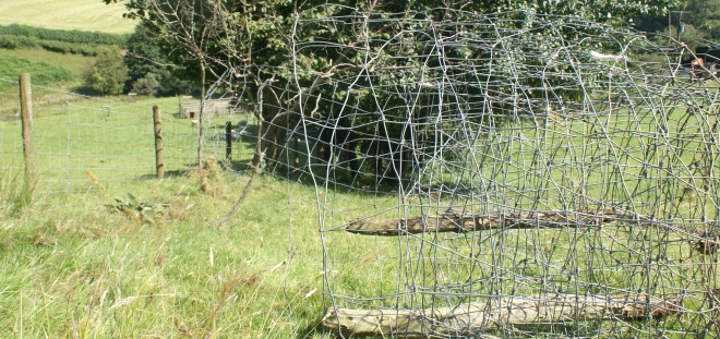 Recycling fence wire - the old will last longer than the new!