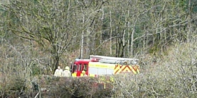 Fire-engine over hedge